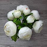 Букет белых лютиков 6 больших и 3 маленьких цена 185 грн., фото 8