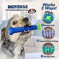 Зубная щетка для собак Сhewbrush (DOG DUMMY BONE)