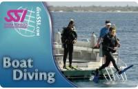 Погружения с бота (Boat Diving)
