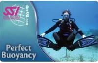 Безупречная плавучесть (Perfect Buoyancy)
