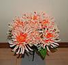 М-587 Сад хризантем  14 голов 40х13 см