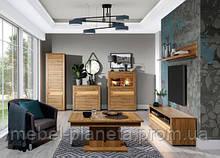 """Модульная система мебель в гостиную зал """"Санди"""" (Сокме)"""