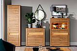 """Модульна система меблі у вітальню зал """"Санді"""" (Сокме), фото 3"""