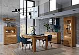 """Модульна система меблі у вітальню зал """"Санді"""" (Сокме), фото 2"""