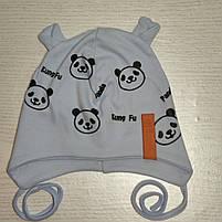 Шапка для мальчика трикотажная на завязках Панда с ушками Размер 44-46 см Возраст 6-12 месяцев, фото 6