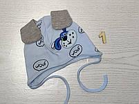 Шапка для мальчика трикотажная с собачкой и ушками Размер 40-42 см Возраст 1-3 месяцев, фото 8