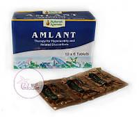 Амлант, Amlant, 60 табл. - повышенная кислотность, язва желудка и двенадцатиперстной кишки, гастрит, рефлюкс, фото 1