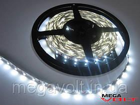 LED лента SMD 2835/60 (IP20) 12V белая (5000-6000К)