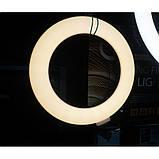 Кільцева лампа для професійної зйомки Ring Fill Light LED 6 CXB-160 (16 см), фото 3