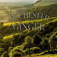 Rochester Ginger-органические безалкогольные напитки времен Чарльза Диккенса!