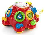 Развивающая музыкальная игрушка каталка сортер Жук 0957, фото 2