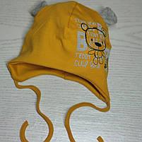 Шапка для мальчика трикотажная на завязках с ушками Размер 40-42 см Возраст 1-3 месяцев, фото 3