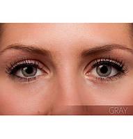 Серые цветные контактные линзы FreshLook Colorblends Gray