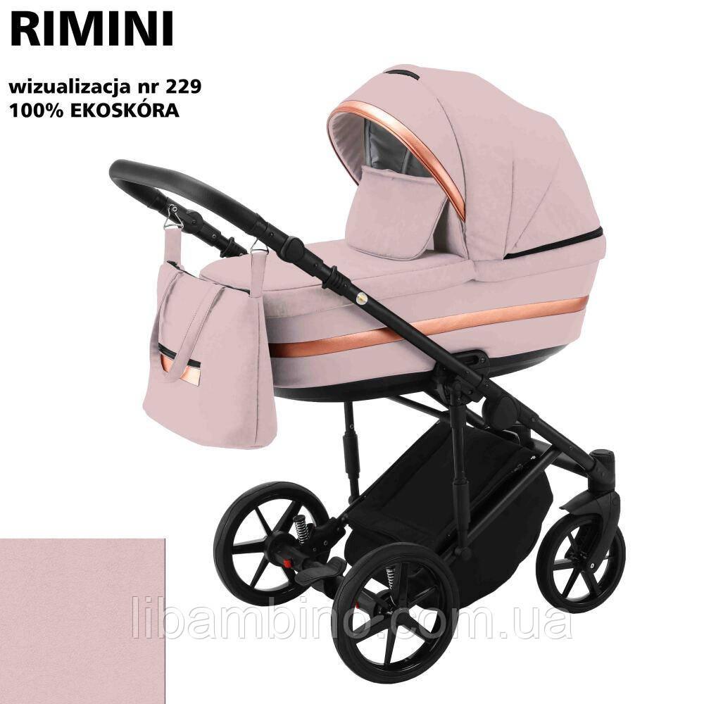 Дитяча універсальна коляска 2 в 1 Adamex Rimini Eco RI-229