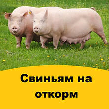 Корми свиней на відгодівлю (гроуэр, фінішер)