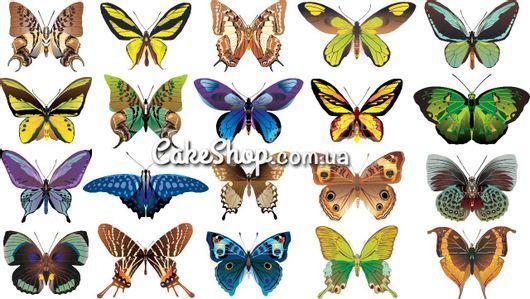 Сахарная картинка Бабочки 11