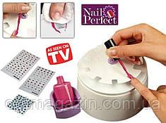 Набір для створення манікюру Nail Perfect, фото 2