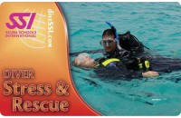 Стресс и спасение (Stress Rescue)