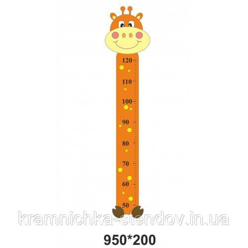 Ростомір жираф