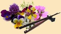 Живые съедобные цветы(анютины глазки,фиалка,настурция,календула,, фото 1