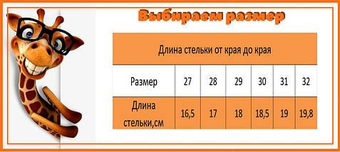 7997E Детские серые кроссовки для мальчика тм Boyang размер 27,28,29,30,31,32, фото 3