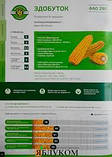 Семена кукурузы ЗДОБУТОК (ФАО 290), 2018 г.у. (Маис Черкассы), фото 7