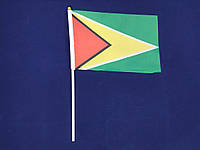 Флажок Гайаны 14х21см на пластиковом флагштоке
