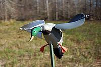 Чучело утки новое с подвижными крыльями Mojo wind duck decoy