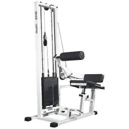 Тренажер для мышц спины Vasil Gym, фото 2
