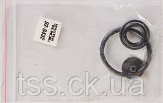 Ремкомплект для пневматического опрыскивателя MASTERTOOL 92-9432