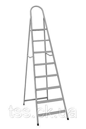 """Драбина металева """"ІТАЛІЯ"""" 9 ступенів з розтяжками, h=1960 мм, max 150 кг ГОСПОДАР 79-1049, фото 2"""