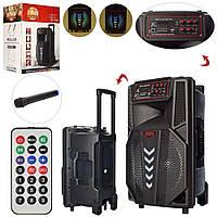 Портативная большая колонка (12дюйм, 4000mA, свет, Bluetooth,TF, USB, MP3, FM) Super bass LT-1205 с микрофоном