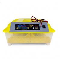 Инкубатор автоматический HHD WQ 56 (220/12V), ТЭН, вентилятор, влагомер, на 56 яиц
