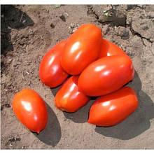 Насіння томату Інкас F1 (1000 сем.)