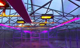 Фитолампы, лампы для растений, светодиодные лампы