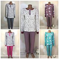 Пижама женская теплая - кофта и штаны, байка, начес, большие размеры.42/44,46/48,50/52,54/56,58/60.