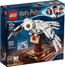 Конструктор LEGO Harry Potter Букля 75979