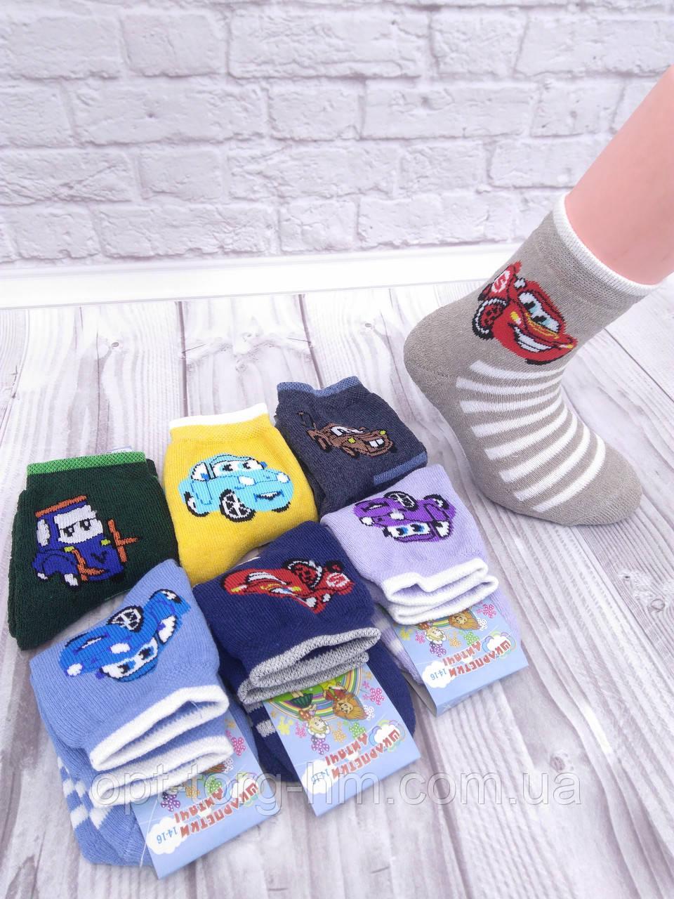 Махрові дитячі шкарпетки Мікс машинки 14-16 (взуття 22-25)