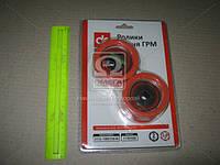Ролик ГРМ ВАЗ 2112 (натяжной+опорный) 16-кл. . 2112-1006120/35, фото 1