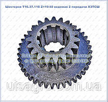 Шестерня Т16.37.118 Z=19/40 ведена 2 передачі ХЗТСШ