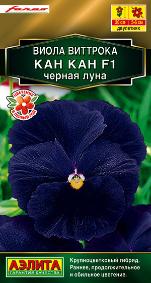 Семена Виола Виттрока КАН КАН F1 Чёрная луна  7 шт.