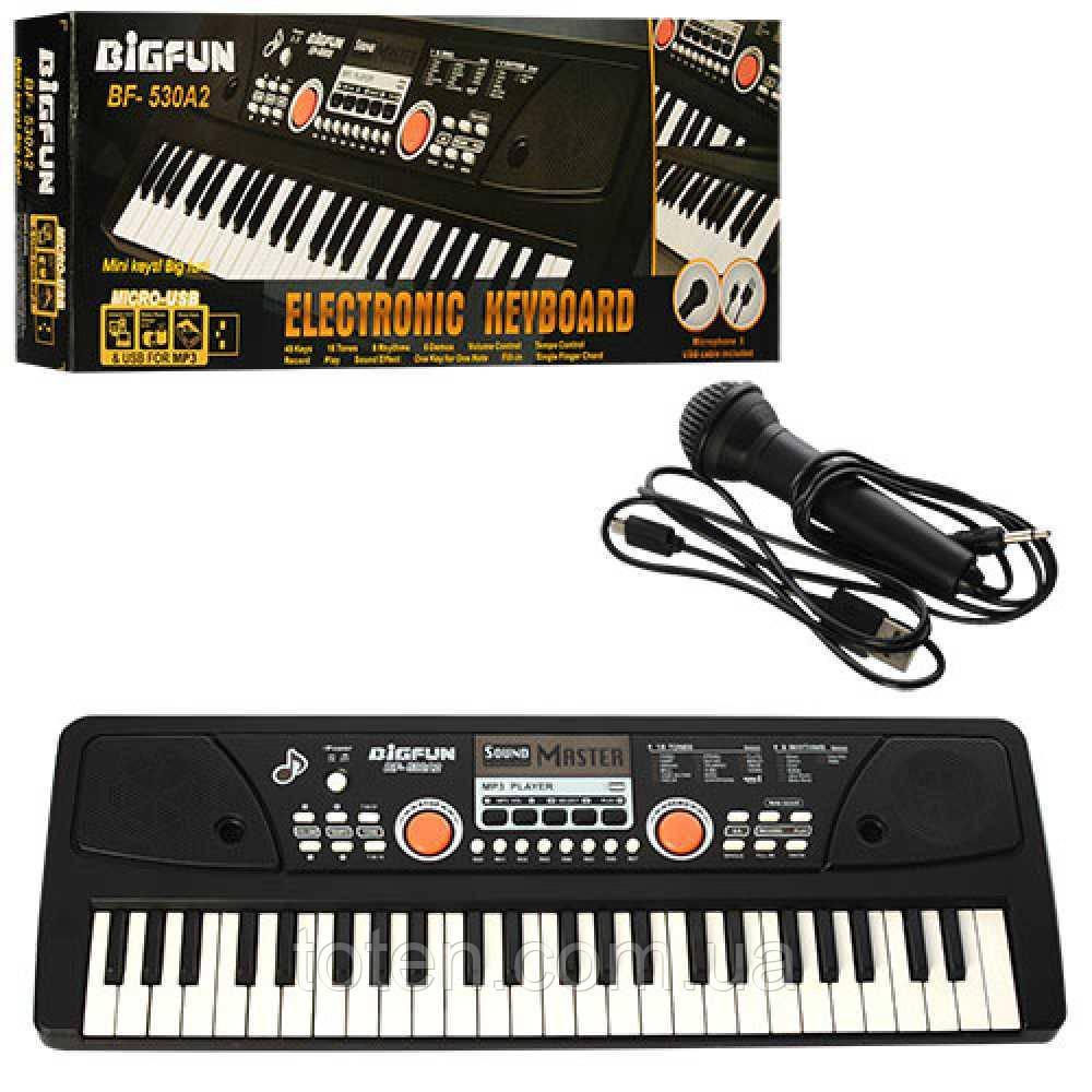 Синтезатор BF-530A2 49 клавіш, мікрофон, USB, mp3, запис, Demo, від мережі