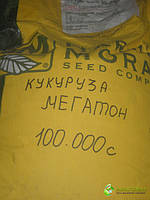 Кукуруза Мегатон 100000с, фото 1