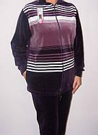 Спортивный костюм велюровый большого размера