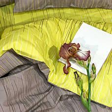 Viluta Комплект постельного белья вилюта 20109 ранфорс, фото 3