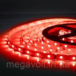 Красная LED лента SMD 2835/60 (IP20) 12V RED