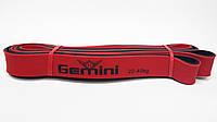 Резина для подтягиваний 22-40 кг 208*2,9*0.45 см Gemini