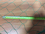 Сетка безусловная капроновая ячейка 60мм нитка 1,0мм ширина 24,5м в рабочем состоянии, фото 2