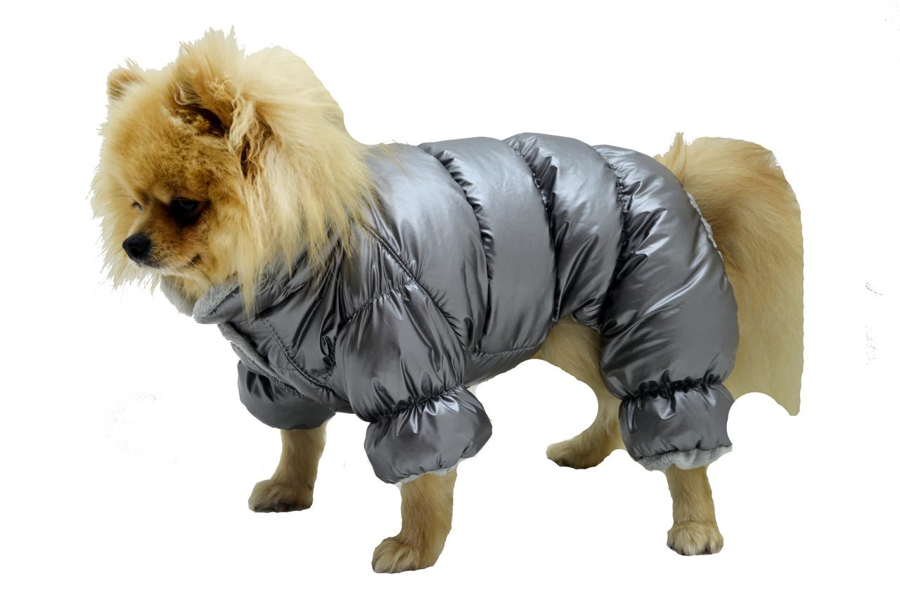 Комбінезон для собак зимовий Норд сірий