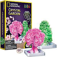 Научный STEM набор Сад кристаллов от NATIONAL GEOGRAPHIC (США)